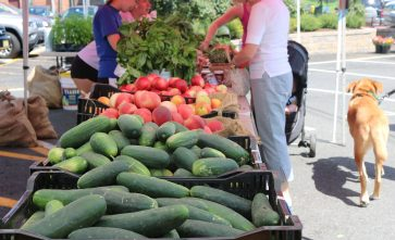 Morristown Farmers Market (1)_preview