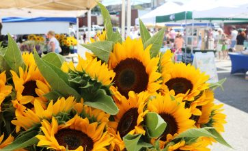 Morristown Farmers Market (2)_preview